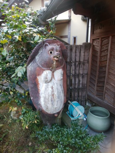 ogawatei-old-racoondog